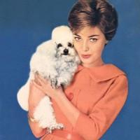 1950s fashion 1959-2-neu-0002